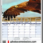 photocommission-calendar-2012-portrait-page01F-480px