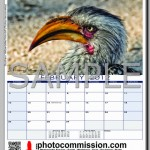 photocommission-calendar-2012-portrait-page01R-480px