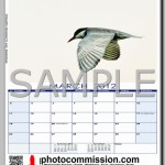 photocommission-calendar-2012-portrait-page02F-480px