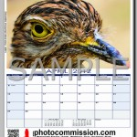 photocommission-calendar-2012-portrait-page02R-480px