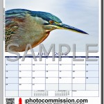 photocommission-calendar-2012-portrait-page04F-480px