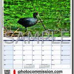 photocommission-calendar-2012-portrait-page05F-480px