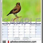 photocommission-calendar-2012-portrait-page05R-480px