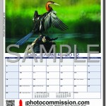 photocommission-calendar-2012-portrait-page06R-480px