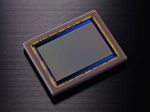 Nikon D800/E 36,3Mp CMOS