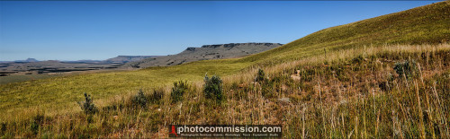Northern Berg Vista